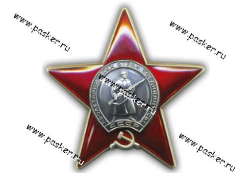 Наклейка 9 мая Орден Красной звезды 13х13